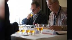 Dutch Beer Challenge 2016 in Rotterdam
